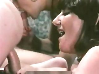 Cc Arousing 527