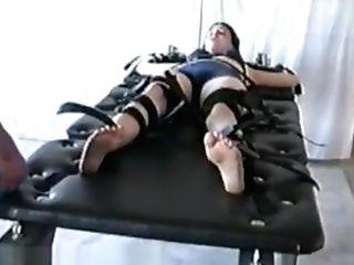 Jessicas Kittle Torment